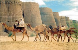 Pakistan Travel & Tours