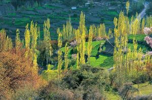 Hindukush Karakoram