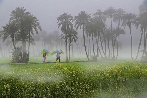 South Punjab